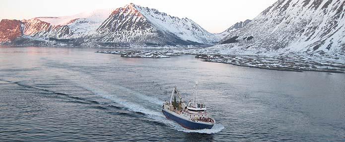 barco_lofoten